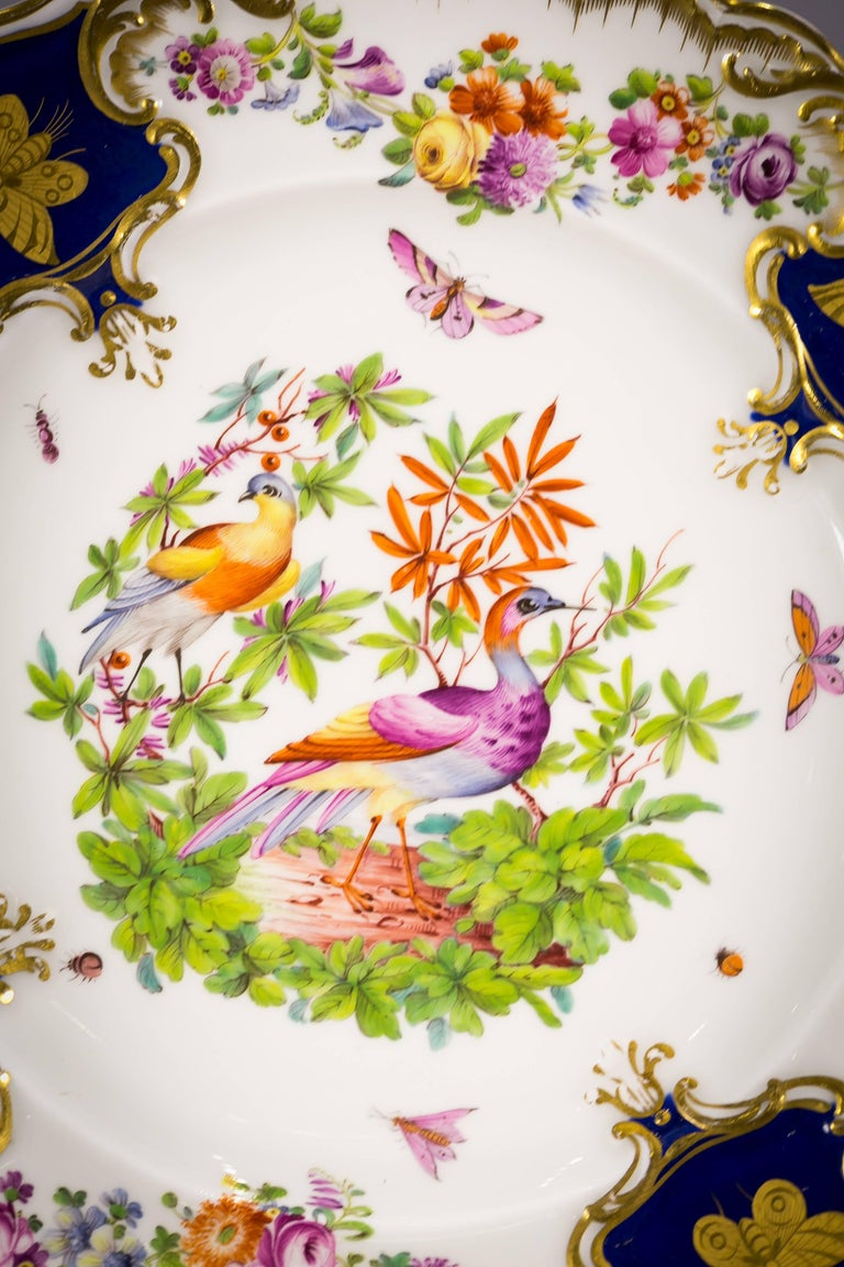 Set of 12 English Porcelain Plates, Coalbrookdale, circa 1850 In Excellent Condition For Sale In New York, NY