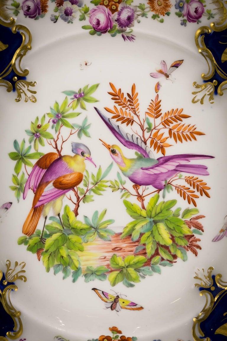 Set of 12 English Porcelain Plates, Coalbrookdale, circa 1850 For Sale 3