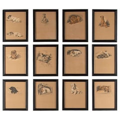 Set of 12 Lucy Dawson Dogs