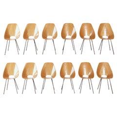 Set of 12 Medea Chairs by Vittorio Nobili, Fratelli Tagliabue, Italy, 1950s