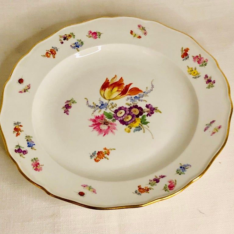 Romantic Set of 12 Meissen Dinner Plates Each Painted with a Different Bouquet of Flowers For Sale