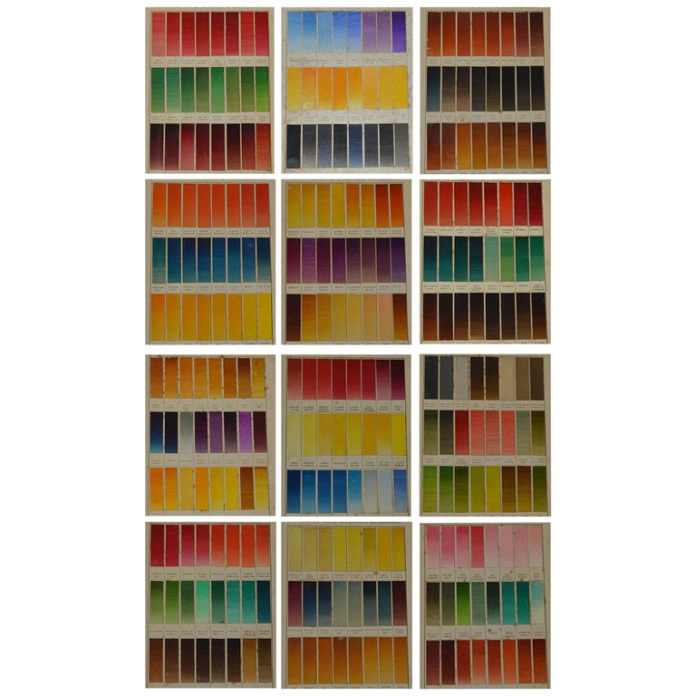 Set of 12 Vintage Artists Oil Color Charts, circa 1900 For Sale
