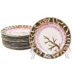 Set of Twelve Wedgwood Seaweed Majolica Plates England, circa 1880