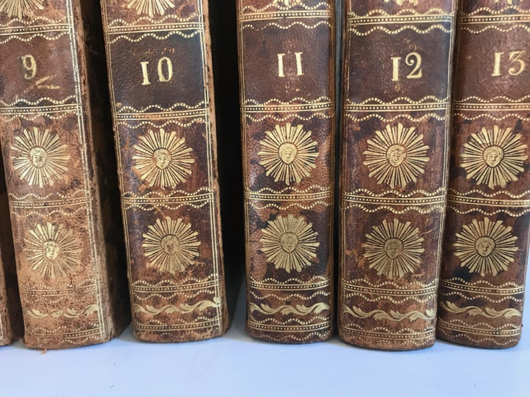 Set of 13 Volumes Antique Leather Books For Sale 5