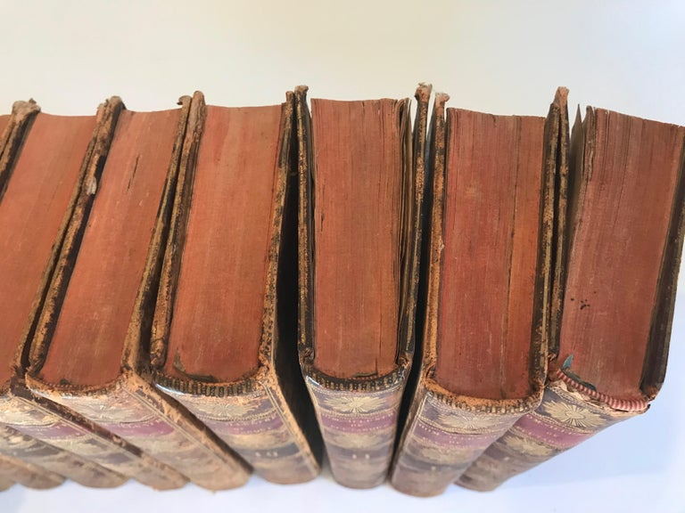 Set of 13 Volumes Antique Leather Books For Sale 6