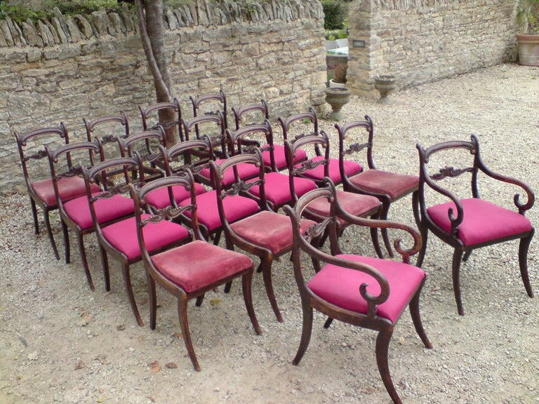 Rare Regency long set of 18 antique dining chairs made of simulated rosewood, these are the Classic Regency shape with sabre legs and drop in seats, they are comfortable and deep without being too wide for easy access to a crowded dinner table, they