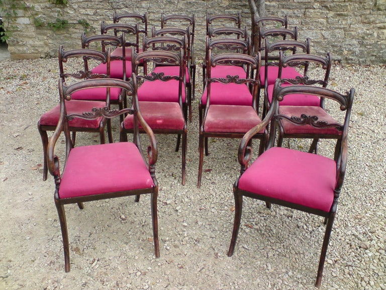 English Set of 18 Regency Dining Chairs For Sale