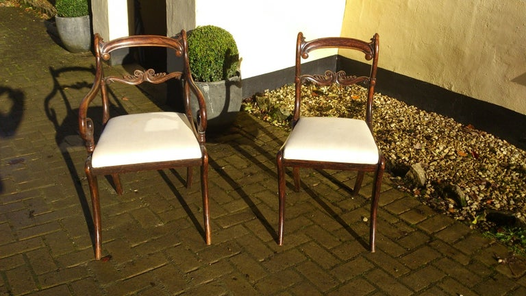 Set of 18 Regency Dining Chairs For Sale 1