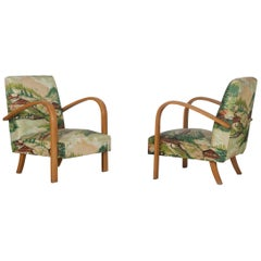 Set of 2 Armchairs with Alpine Scenery, Italy, 1940s