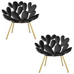 Set of 2 Black and Brass Outdoor Cactus Chairs, Designed by Marcantonio