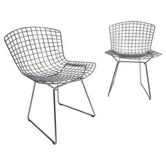 Set of 2 Chairs Harry Bertoia for Knoll