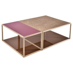 Set of 2 Modular Low Table Collection, Brass and Glass by P. Tendercool