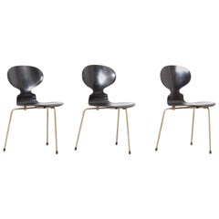 Set of 3 Black Arne Jacobsen Ant Chairs for Fritz Hansen, Denmark, 1950s