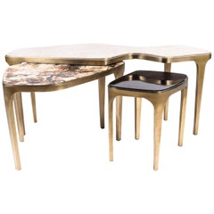 Set of 3 Cosmos Nesting Coffee Tables in Shagreen, Shell & Hwana R & Y Augousti