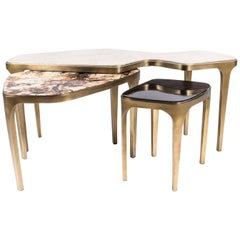 Set of 3 Cosmos Nesting Coffee Tables in Shagreen, Shell & Hwana R&Y Augousti