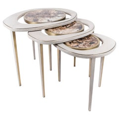 Set of 3 Peacock Nesting Tables in Shagreen Hwana, and Brass by R&Y Augousti