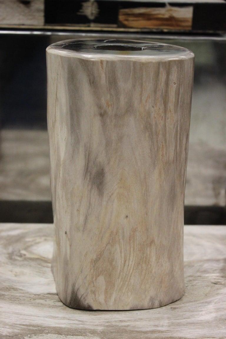 Set of 3 Petrified Wood Candleholders For Sale 1