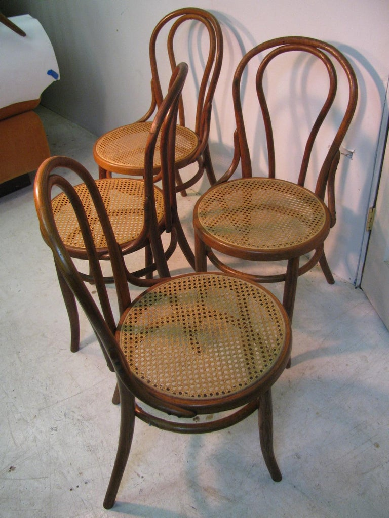 Set of 4 bentwood chairs crafted from oak with caned seats. Lightweight and very sturdy, chairs have been re-caned in the last few years.