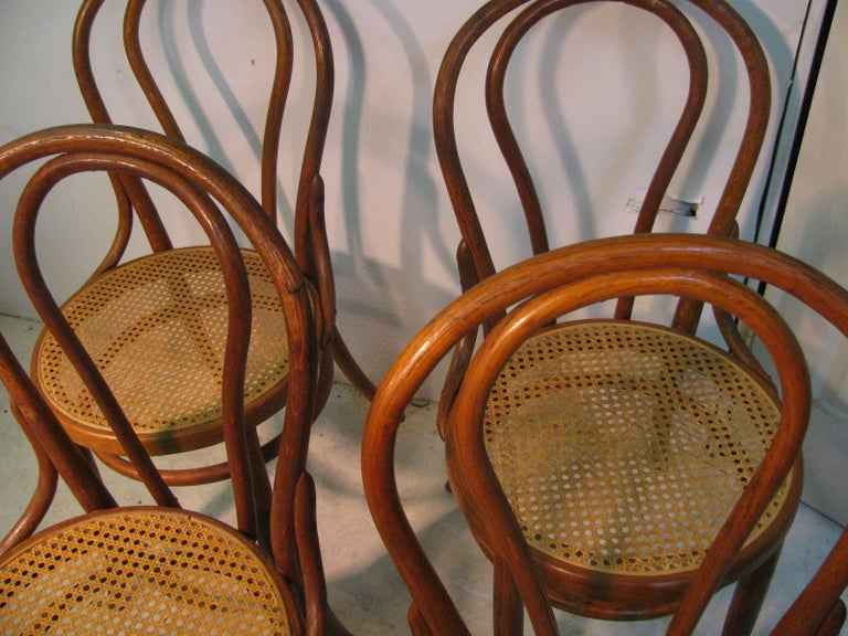 Late 19th Century Set of 4 Antique Thonet Bentwood Chairs with Caned Seats For Sale