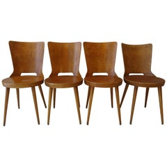 "Set of 4 Chairs ""Dove"" Model by Baumann"