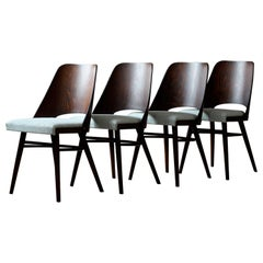 Set of 4 Dining Chairs by R. Hofman for Ton, Model 514, New Sahco Upholstery