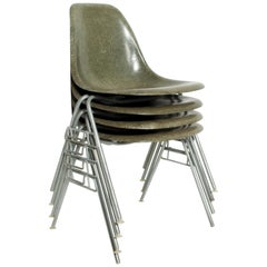 Set of 4 Eames Herman Millers DSS Fiberglass Chairs Rare Olive Color