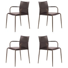 Set of 4 Gazzella Armchairs by Tom Kelley for Enrico Pellizzoni