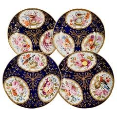 Set of 4 John Rose Coalport Plates, Cobalt Blue, Birds, Flowers, circa 1805