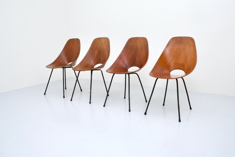 Italian Set of 4 Medea Dining Chairs by Vitorio Nobili for Fratelli Tagliabue, 1955 For Sale