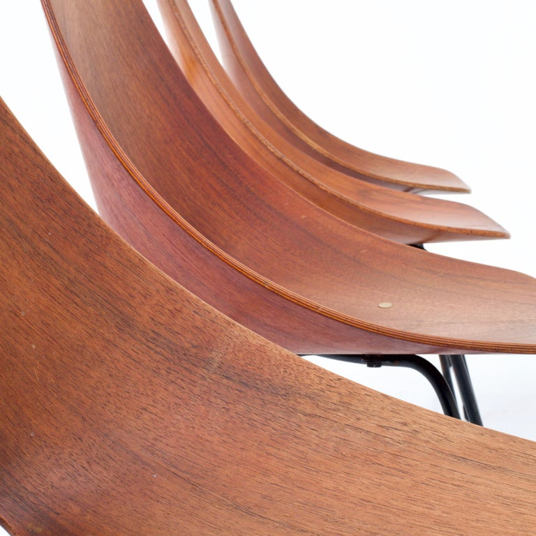 Set of 4 Medea Dining Chairs by Vitorio Nobili for Fratelli Tagliabue, 1955 For Sale 1