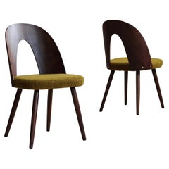 Set of 4 Midcentury Dining Chairs by A. Šuman in Honey-Olive Boucle by Kvadrat