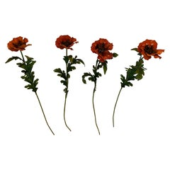 Set of 4 Striking Painted Iron Tall Long Stem Poppy Flowers