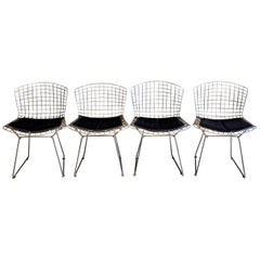 Set of 4 Wire Chairs by Harry Bertoia for Knoll
