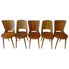 "Set of 5 Chairs with 3 ""Dove"" and 2 ""Mondor"" by Baumann"