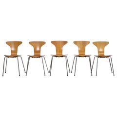 Set of 5 'Mosquito' Dining Chairs by A. Jacobsen for Fritz Hansen, Denmark 1950s
