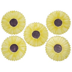 Set of 5 Sunflower Majolica Plates from the French Provence