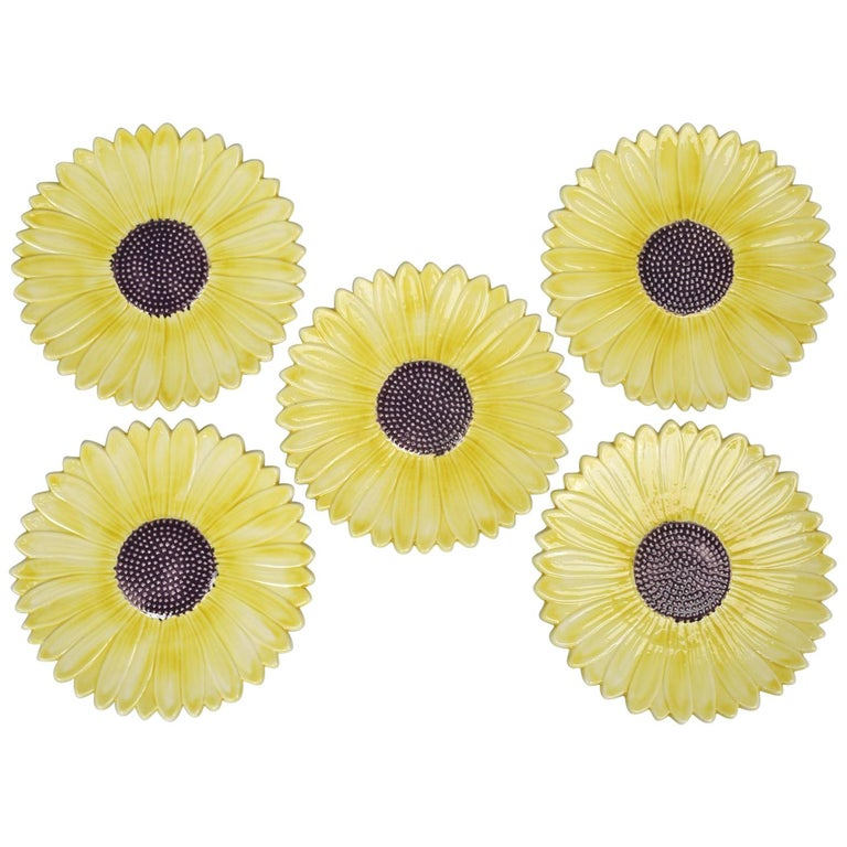 Set of 5 Sunflower Majolica Plates from the French Provence For Sale