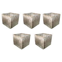 Set of 5 Willy Guhl Box Planters