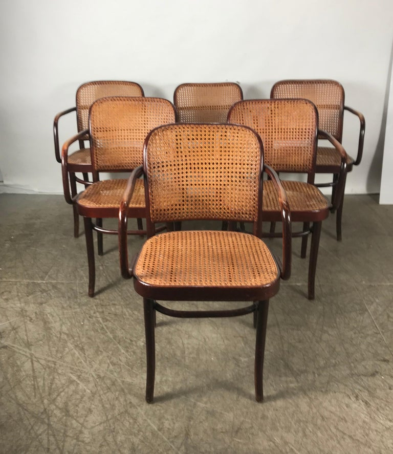 Classic set of 6 dining room armchairs designed by Josef Hoffmann, coined the