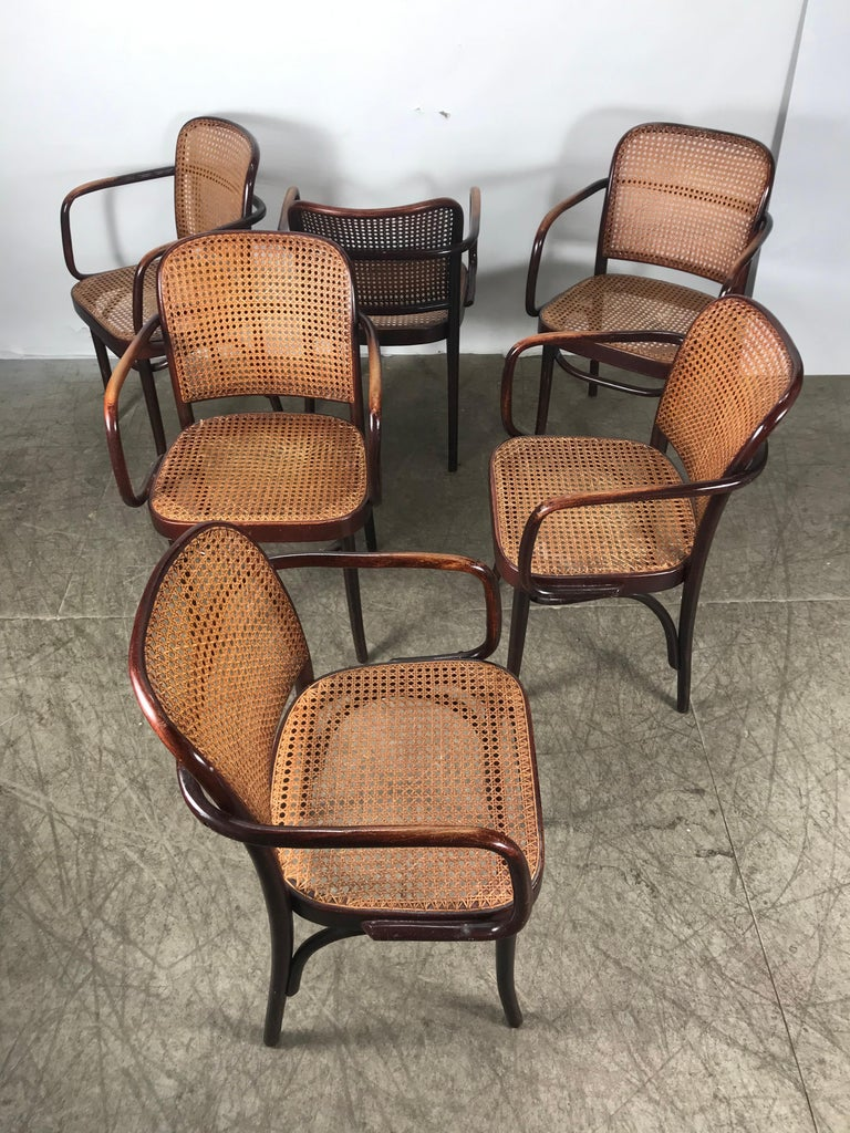 Polish Set of 6 Bentwood and Cane Armchairs