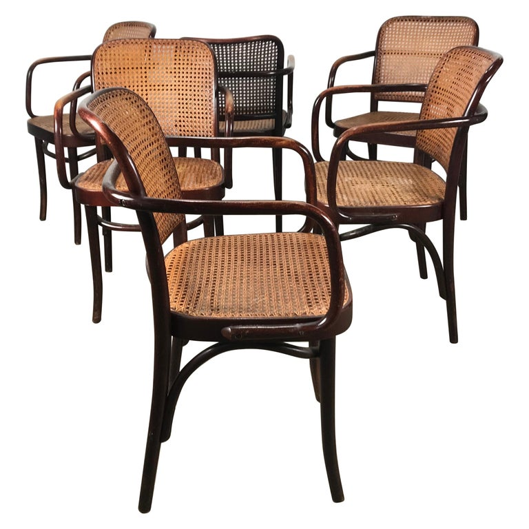 "Set of 6 Bentwood and Cane Armchairs ""Prague"" by Josef Hoffmann For Sale"