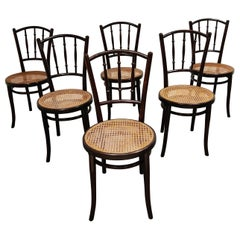 Set of 6 Bentwood Chairs by Thonet, 1920s, Austria
