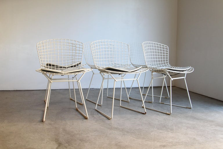 Mid-Century Modern Set of 6 Bertoia Side Chairs for Knoll Vintage