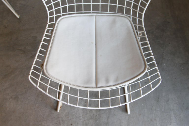 Set of 6 Bertoia Side Chairs for Knoll Vintage 3