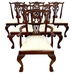 Set of 6 Carved Mahogany Chippendale Dining Chairs