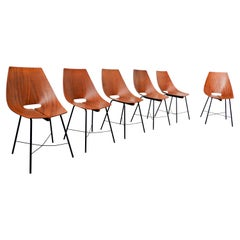 Set of 6 Chairs by Carlo Ratti, 1960s