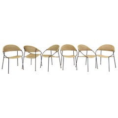 Set of 6 Chairs Model DU41 by Gastone Rinaldi for RIMA, Italy, 1956