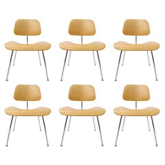 "Set of 6 Charles Eames ""DCM"" Molded Plywood Chairs for Herman Miller White Ash"