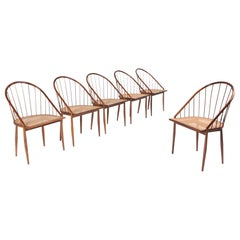 Set of 6 Curva Dining Chairs by Joaquim Tenreiro