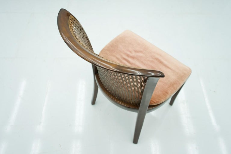 Set of 6 Elegant Chairs in Mahogany and Cane WK, Germany, 1970s For Sale 1